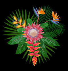 Tropical bouquet composition with protea vector