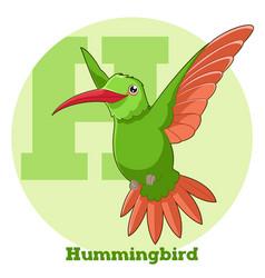 Abc cartoon hummingbird vector
