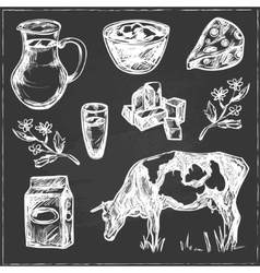 Dairy products hand drawn decorative icons set vector image vector image