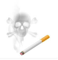 Human scull appears in cigarette smoke on white vector