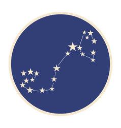 Constellation scorpio vector