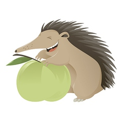 Hedgehog vector image