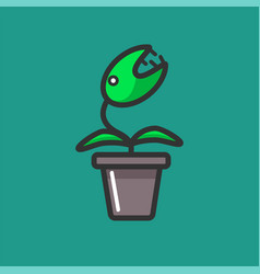 Venus flytrap plant in a flowerpot isolated on vector