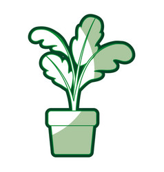 Green silhouette of beet plant in flower pot with vector