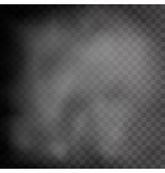 Realistic transparent fog steam or smoke vector