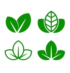 Eco Green Leaf Icon Set vector image vector image