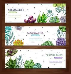Succulent plants horizontal banners vector