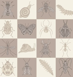 Insects squares on brown shades in a checkerboard vector