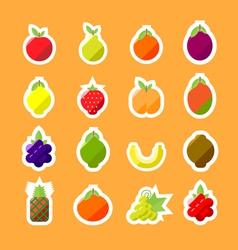 fruitsMinimal v3 vector image