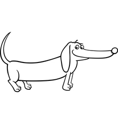 Dachshund dog cartoon for coloring vector