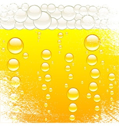 Beer and bubbles vector