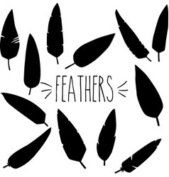 feathers silhouette vector image