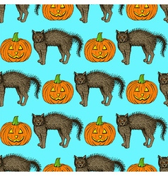 Sketch cat and pumpkin vector image vector image