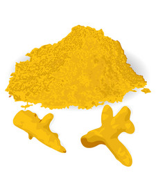 Turmeric roots and powder vector