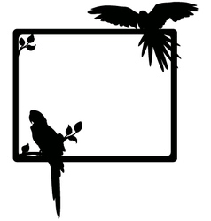 Macaw silhouette vector