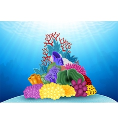 Beautiful Coral Underwater world vector image