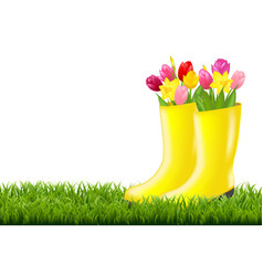 Gumboot with green grass and tulips vector