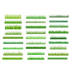Fresh green spring grass borders vector