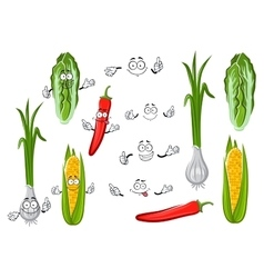 Chilli pepper corn onion and cabbage vector