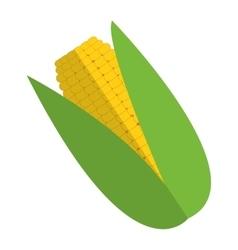 Corn cob icon vector