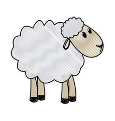 Curly lamb christmas manger religio vector