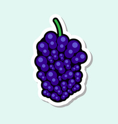 Mulberry sticker on blue background colorful fruit vector