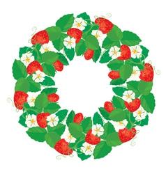 strawberry circle 1 380 vector image vector image
