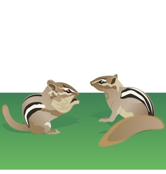 Chipmunks vector