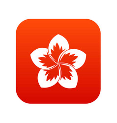 frangipani flower icon digital red vector image