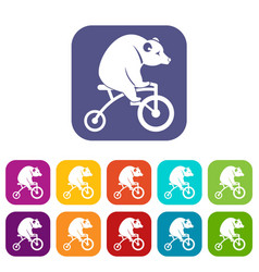 Bear on a bike icons set vector