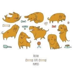 Cute little puppies set in various poses jumping vector image vector image
