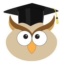 Owl in graduation hat vector image