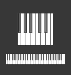 Piano keys pattern vector