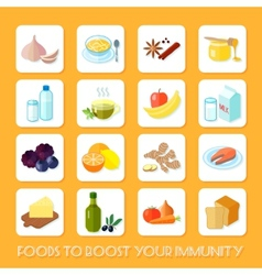 Healthy food icons flat vector