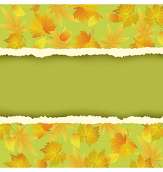Background with yellow autumn leaf vector image vector image
