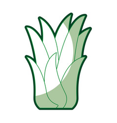 Green silhouette of corn plant with thick contour vector