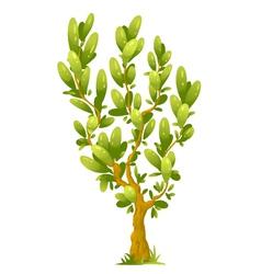 Cartoon tree with elliptical leaves vector