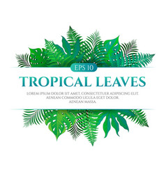 Tropical leaves frame design with place for text vector