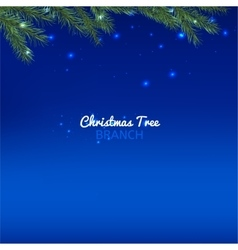 Christmas tree branch vector