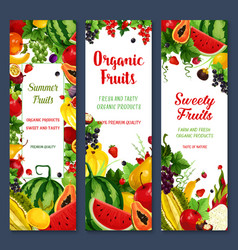 Banners of tropical fruits or fresh berries vector