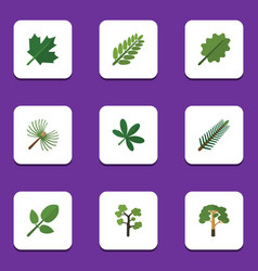 Flat icon bio set of leaves garden wood and vector