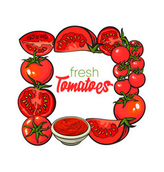 Square frame of tomatoes salsa ketchup bowl vector