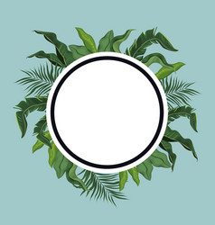 label tropical leave palm vector image