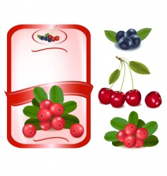 Label with cranberries vector