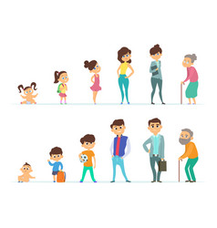 life cycle of male and female different vector image vector image