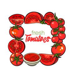 square frame of tomatoes salsa ketchup bowl vector image