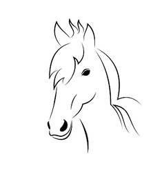 Symbol sketch outline head horse vector image