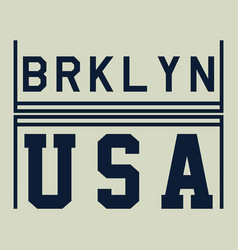 usa brooklyn vector image