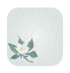 Button square spring flower jasmine cracks vector