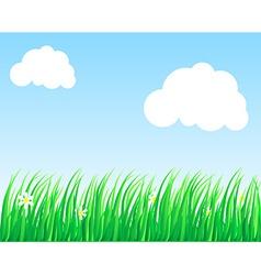Lush grass vector image